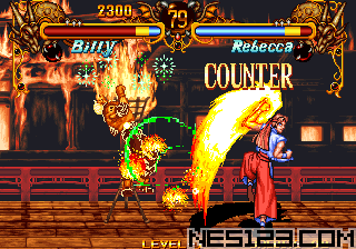 Double Dragon Battle